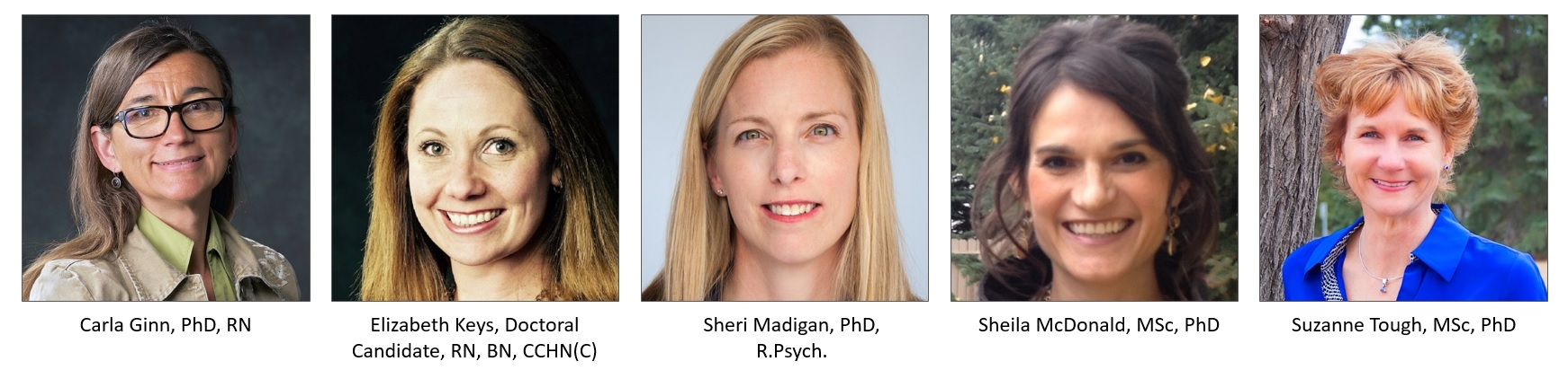 Carla Ginn, PhD, RN, Elizabeth Keys, Doctoral Candidate, RN, BN, CCHN(C), Sheri Madigan, PhD, R.Psych., Sheila McDonald, MSc, PhD, Suzanne Tough, MSc, PhD